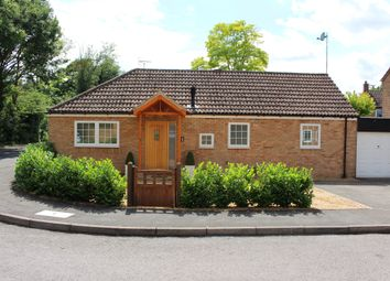 Thumbnail 3 bed detached bungalow for sale in St Marys Walk, Fowlmere, Royston