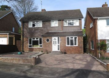 Thumbnail 4 bed property to rent in Ranelagh Crescent, Ascot, Berkshire