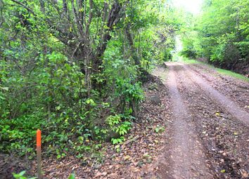 Thumbnail Land for sale in Minere, St. Andrew, Grenada