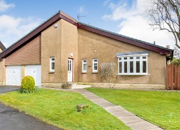Thumbnail 4 bed bungalow to rent in Downfield Gardens, Bothwell