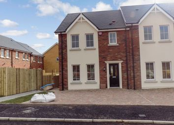 Thumbnail 3 bed town house to rent in 10 Ayrshire Lodge, Brokerstown Road, Lisburn