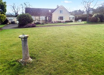 Thumbnail 4 bed detached house for sale in Whitchurch Canonicorum, Bridport