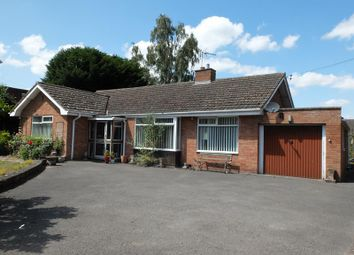 Thumbnail 3 bed bungalow for sale in Rosehill, 70 New Road, Bromyard, Herefordshire