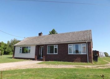 Thumbnail 3 bed bungalow for sale in Wreningham, Norwich, Norfolk