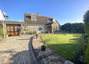 4 bed detached bungalow for sale in Portfield Gate, Haverfordwest SA62