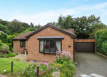 Thumbnail 3 bed bungalow for sale in Springfield Park, Alnwick, Northumberland