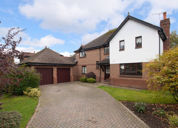 Thumbnail 5 bedroom detached house to rent in 61 Katesmill Road, Colinton