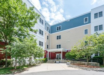 Thumbnail 2 bed apartment for sale in Malden, Massachusetts, 02148, United States Of America