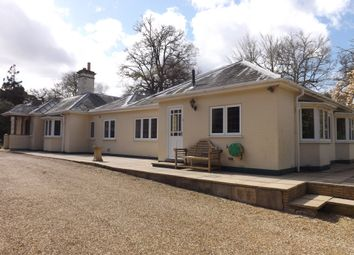 Thumbnail 5 bedroom bungalow for sale in Bassett Green Road, Chilworth, Southampton, Hampshire