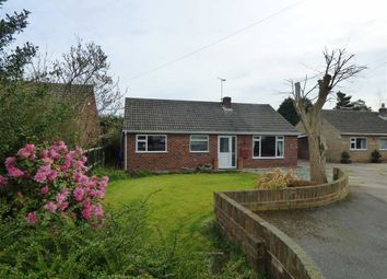 Thumbnail 3 bed bungalow for sale in The Crescent, Beckingham, Doncaster