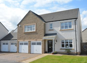 Thumbnail 5 bed detached house for sale in Jardine Avenue, Falkirk