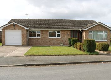 Thumbnail 3 bed bungalow to rent in Traherne Close, Lugwardine, Herefordshire