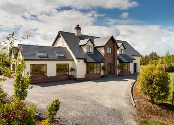 Thumbnail 4 bed detached house for sale in Residence Set On c. 6.5 Acres At Ballinamooagh, Curracloe, Ireland