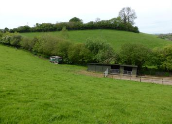 Thumbnail Equestrian property for sale in West Milton, Bridport