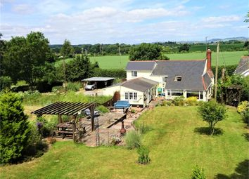 Thumbnail 4 bed cottage for sale in Broadclyst, Exeter, Devon