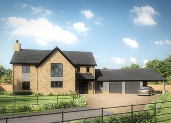 Thumbnail 4 bed detached house for sale in Pound Green Lane, Shipdham, Thetford
