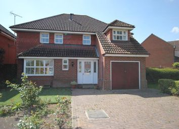 Thumbnail 4 bedroom detached house for sale in Williams Close, Ely