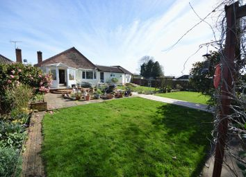 Thumbnail 4 bed detached bungalow for sale in Buckland Close, Waterlooville