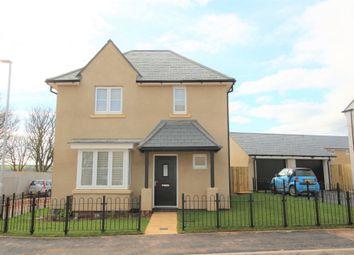 Thumbnail 4 bedroom detached house to rent in Regard Close, Wall Park Road, Brixham