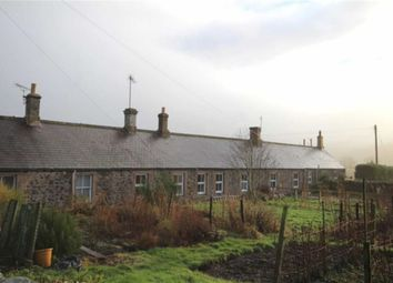Thumbnail 2 bed terraced house to rent in West Newton, Kirknewton, Wooler