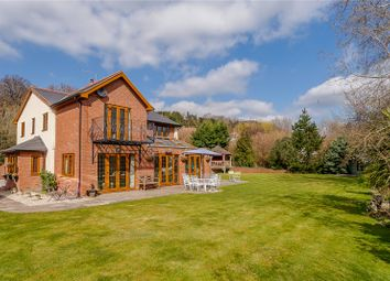 Thumbnail 6 bedroom detached house for sale in Mill Fields, Milford, Newtown, Powys