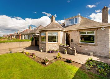 Thumbnail 3 bedroom bungalow for sale in 95 Milton Road West, Duddingston, Edinburgh
