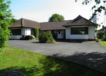 Thumbnail 4 bed bungalow for sale in The Broyle, Shortgate, Lewes, East Sussex