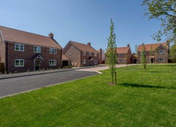 Thumbnail 5 bed detached house for sale in Birch Meadow, Barkway, Royston, Hertfordshire