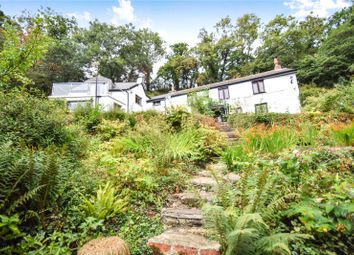 Thumbnail 4 bed detached house for sale in Dinhams Bridge, St. Mabyn, Bodmin