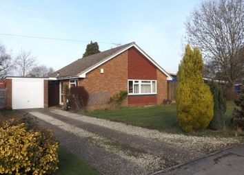 Thumbnail 3 bed bungalow to rent in Lambs Farm Road, Horsham