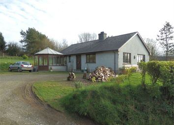 Thumbnail 3 bed detached bungalow for sale in Great Tree, Llangrannog, Ceredigion