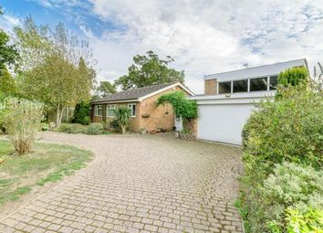 Thumbnail 3 bed bungalow for sale in The Bury, Pavenham, Bedford, Bedfordshire