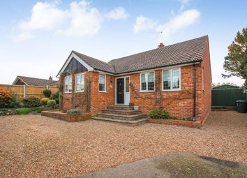 Thumbnail 2 bed detached bungalow to rent in Rose Acre Road, Littlebourne, Canterbury