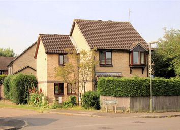Thumbnail 4 bed detached house to rent in Jersey Close, Burpham, Guildford, Surrey