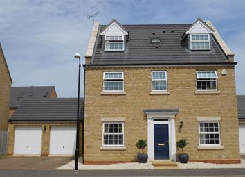 Thumbnail 5 bed detached house to rent in Driffield Way, Peterborough