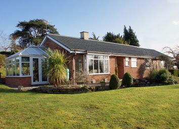 Thumbnail 3 bed bungalow for sale in Oldwood Road, Tenbury Wells