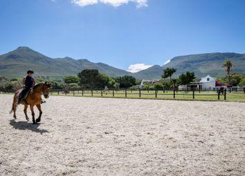 Thumbnail Equestrian property for sale in 1 Buren Road, Noordhoek, Cape Town, Noordhoek, Cape Town, Western Cape, South Africa