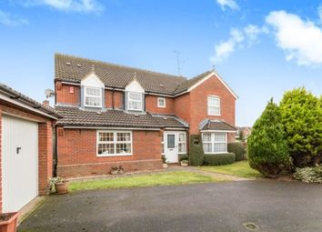 Thumbnail 5 bed detached house to rent in Farriers Close, Bramley, Tadley