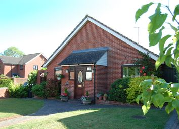 Thumbnail 3 bedroom detached bungalow for sale in The Debenside, Melton, Woodbridge