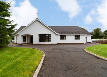 Thumbnail 6 bedroom detached bungalow for sale in Dukestown Lane, Lurgan, Craigavon, County Armagh