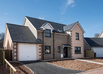 Thumbnail 4 bed detached house for sale in Plot 25, Peelwalls Meadows, Eyemouth