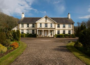 Thumbnail 5 bed country house for sale in Sir Georges Bridge, Kirk Michael, Isle Of Man