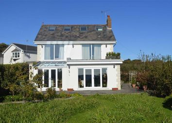Thumbnail 7 bedroom detached house for sale in Mulberry Avenue, Swansea, Swansea
