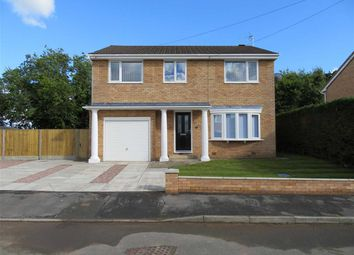 Thumbnail 4 bed detached house for sale in Cae Bychan, Flint