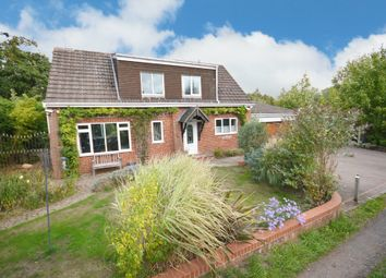 Thumbnail 3 bedroom detached bungalow for sale in Peterbrook Road, Shirley, Solihull