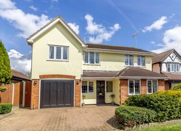 Thumbnail 5 bed detached house for sale in Rye Walk, Ingatestone