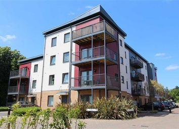 Thumbnail 2 bed flat for sale in Shingly Place, North Chingford, London