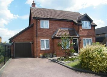 Thumbnail 4 bed detached house for sale in Findon Gardens, Rainham