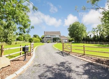 Thumbnail 4 bed detached house to rent in Lough Road, Ballinderry Upper, Lisburn