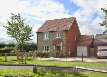 Thumbnail 3 bed detached house for sale in Apple Meadow, Baltonsborough, Glastonbury